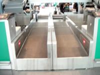 TCS系列行李秤